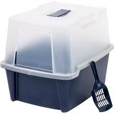 Navy Clear litter Box With Grate and Scoop