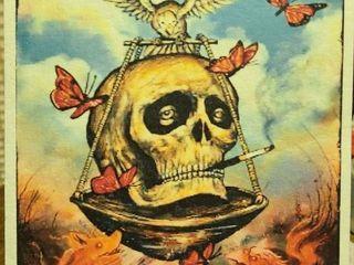 Pixies  Skull