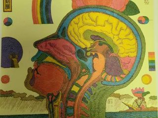 Very Colorful Brainwave