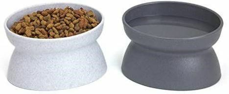 Kitty City Cat Bowl  6 5 ounce  2 count
