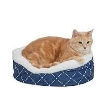 Quiet Time Couture Pet Bed