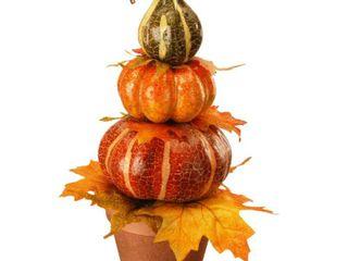 National Tree Company Potted Pumpkin Decor