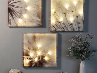 luxen Home Set of 3 Dandelion Prints with led lights