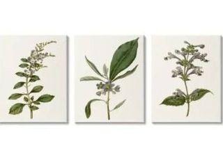 Stupell Industries Minimal Blue Botanical Study Over Neutral Beige Canvas Wall Art  Retail 128 99