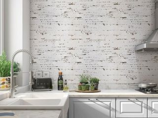 Birch Peel and Stick Wallpaper By Kavka Designs