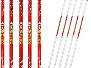 Zhan Yi 6 Pack Carbon Hunting Archery Arrows 340 Spine with Plastic Vanes Removable Tips for Compound Recurve Bows