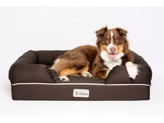 PetFusion Ultimate Dog lounge   Bed   large Brown  36 x 28 x 9 5 large Bed   Brown  Premium Edition w  Solid 4  Memory Foam