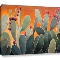 24x32  The Curated Nomad Hermosa Rick Kersten  Cactus Orange  Gallery Wrapped Canvas