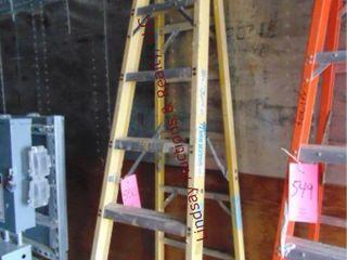 Green Bull 8  fiberglass ladder