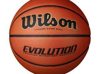 Wilson Indoor Basketball