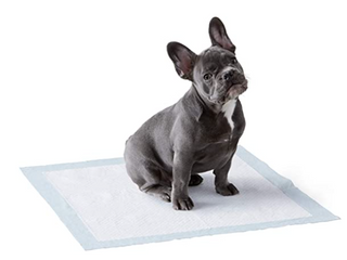 Amazon Basic Pet Sheets Pet Training Puppies For Carbon Toilet Pad Standard Size