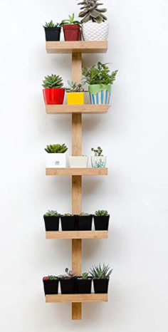 WAll SHElF WANDREGAl