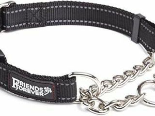 Friends Forever Martingale Collars for Dogs