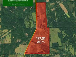 Gainesville, Alabama Bankruptcy Real Estate Auction 177.01� Acres