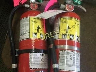 Pair of Fire Extinguishers