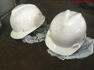 1 New   1 Used Hard Hat