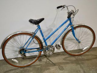 Blue Supercycle Adult Bike  19  frame