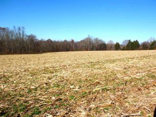 LIVE ONSITE ABSOLUTE AUCTION - BEAUTIFUL 69.70 ACRE, m/l FARM IN RUSSELL COUNTY, KENTUCKY
