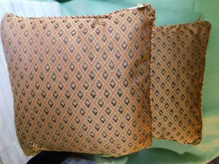 Two large Throw Pillows