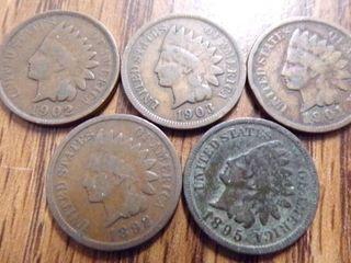 5   INDIAN HEAD PENNIES