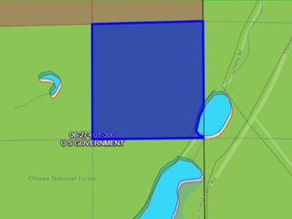 40A Vacant Land, Watersmeet Twp, Gogebic County