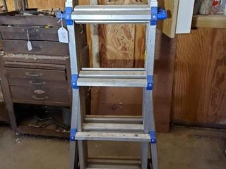17  Cosco Extension ladder