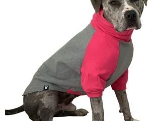 Tooth And Honey large Dog  Hot Pink And Gray