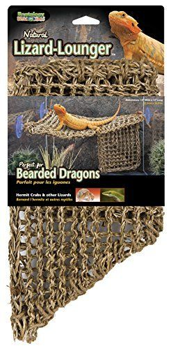 Penn Plax REP701 lizard lounger  100  Natural Seagrass Fibers For Anoles  Bearded Dragons  Geckos  Iguanas  and Hermit Crabs Triangular 14 x 14 Inches large
