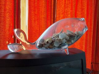 Glass FIsh With Sea Shells