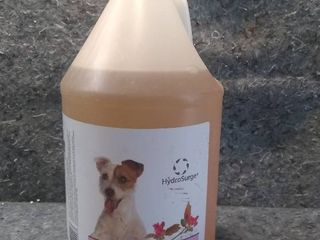 Gallon of HydroSurge Cherry Blossom Whitening and Brightening Dog Shampoo