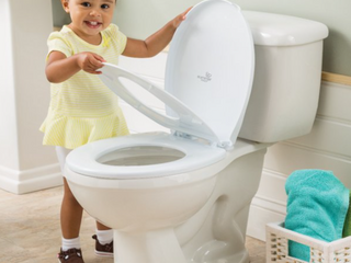 Summer two and one potty topper