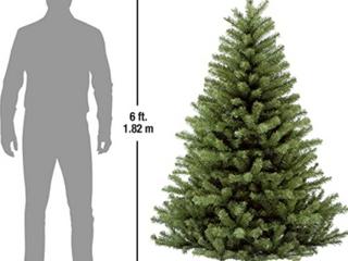 National tree company 6 foot unlit tree Retail   75