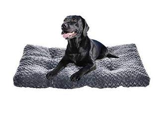 2 Amazon Basics Pet Dog Bed Pad  40 x 27 x 3 5 Inch  Grey Swirl USED dirty DAMAGED