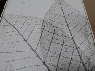 leaf Print Wall Art