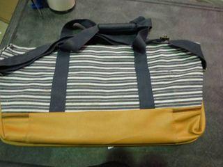 DSW Striped Bag