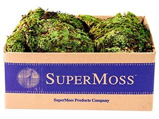 SuperMoss  21881  Royal Pool Moss Preserved  Fresh Green  3lbs
