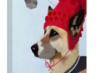 Fab Funky Dog In Ski Sweater Canvas Art  24x32
