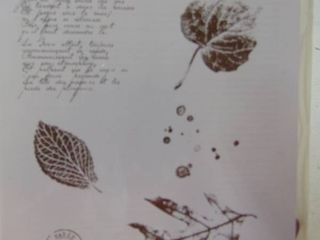 Stampin Up   French Foliage   Unopened