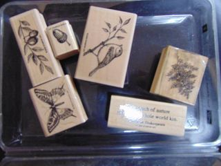 Sampin Up   Touch of Nature   6 of 7 Stamps