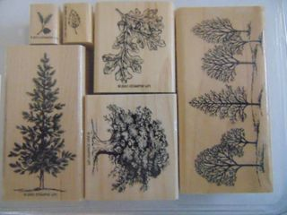 Stampin Up   lovely As a Tree   Complete