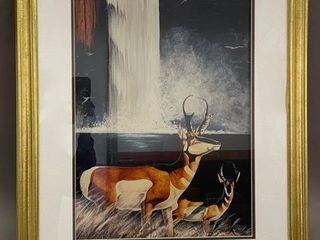 large Antelope Framed Print