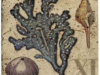 Thirstystone Sea life XI Stone Trivet  Travertine
