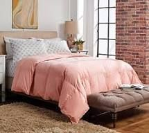 Northern Nights 650 Fill Power 440TC Cotton Premium Down Comforter Blush
