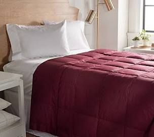 Northern Nights 550 Fill Power 100  Cotton Down Blanket  Queen Cabernet