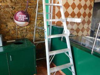 Werner Eight Foot Aluminum ladder