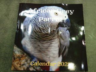 African Grey Parrot 2021 Calendar