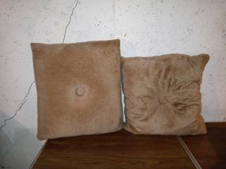 lot Of 2 large Cushions For Chair Or Couch