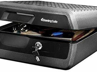 SENTRY SAFE CHW30220 0 36 CUBIC FEET