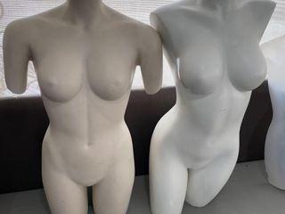 Pair of Female 3 4 Body Mannequins