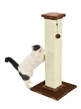 Amazonbasics Premium Cat Scratching Post   large  Wood  Cat Not Included